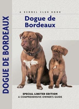 Dogue De Bordeaux: A Comprehensive Owner's Guide
