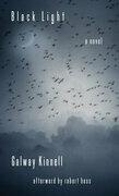 Black Light: A Novel