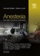Anestesia: Cane, gatto e animali non convenzionali