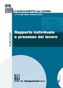 Rapporto individuale e processo del lavoro