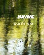 BRINK: Don't Go Back to Sleep