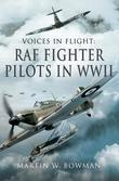 RAF Fighter Pilots in WWII