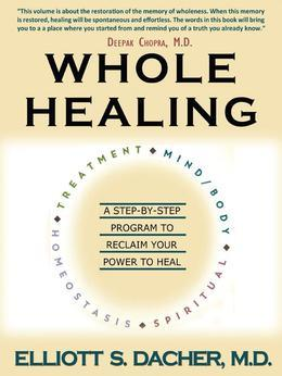 Whole Healing: A Step-by-Step Program to Reclaim Your Power to Heal