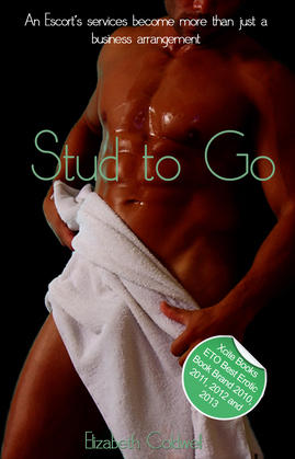 Stud to Go: An erotic gay novella