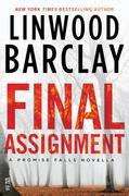 Final Assignment: A Promise Falls Novella