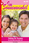 Im Sonnenwinkel 42 - Familienroman