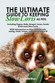 The Ultimate Guide to Keeping Slow Loris as Pets: including Pygmy, Baby, Bengal, Javan, Sunda & Bornean Slow Loris