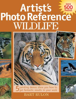 Artist's Photo Reference - Wildlife