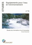 tude de la formation d'un lit torrentiel
