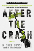 After the Crash: A Novel