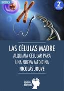 Las células madre