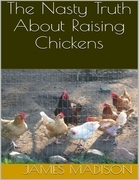 The Nasty Truth About Raising Chickens
