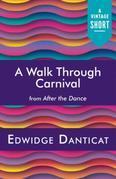 A Walk Through Carnival