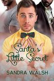 Santa's Little Secret