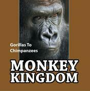 Monkey Kingdom: Gorillas To Chimpanzees: Monkey Books for Kids