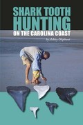 Shark Tooth Hunting on the Carolina Coast