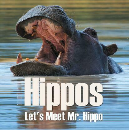 Hippos - Let's Meet Mr. Hippo: Hippo Books for Children