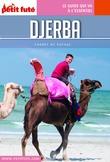 Djerba 2016 Carnet Petit Futé (avec cartes, photos + avis des lecteurs)