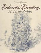 Delacroix: Drawings 145 Colour Plates