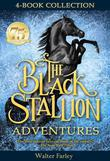 The Black Stallion Adventures