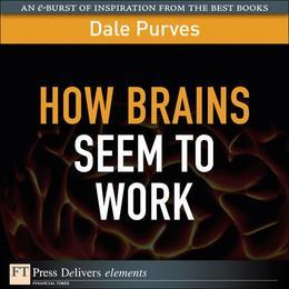 How Brains Seem to Work