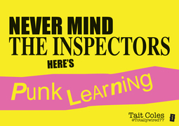 Never Mind the Inspectors