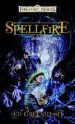 Spellfire: Shandril's Saga, Book I