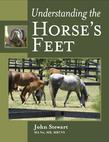 Understanding the Horse's Feet