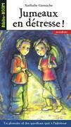 Biblio Boom 7 - Jumeaux en détresse !