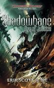 Shadowbane: Eye of Justice