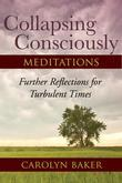 Collapsing Consciously Meditations: Further Reflections for Turbulent Times
