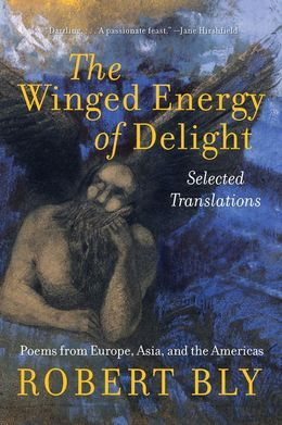 The Winged Energy of Delight