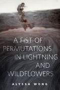 A Fist of Permutations in Lightning and Wildflowers
