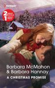 A Christmas Promise: Snowbound Reunion\Christmas Gift: A Family
