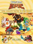 Angry Birds Epic Tips, Cheats, Tricks & Strategies Unofficial Guide