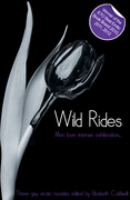 Wild Rides: Three erotic gay novellas