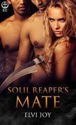 Soul Reaper's Mate
