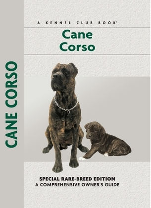 Cane Corso: Sports and Resistance in the United States