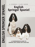 English Springer Spaniel: A Comprehensive Guide to Owning and Caring for Your Dog