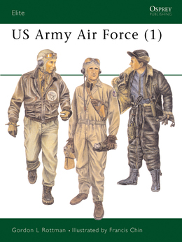 US Army Air Force (1)
