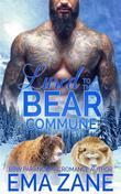 Lured To The Bear Commune