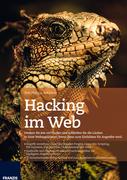 Hacking im Web