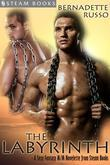 The Labyrinth - A Sexy Fantasy M/M Novelette from Steam Books