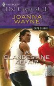 A Clandestine Affair