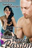 Picture Perfect Passion - A Sexy Interracial BWWM Erotic Story from Steam Books