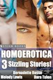 Homoerotica - A Sexy Bundle of 3 Gay M/M Erotic Stories from Steam Books