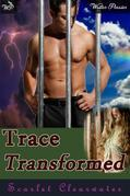 Trace Transformed: An erotic tale of love and redemption