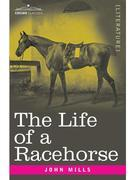 The Life of a Racehorse