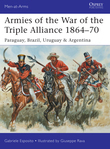 Armies of the War of the Triple Alliance 1864?70