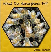 What Do Honeybees Do?